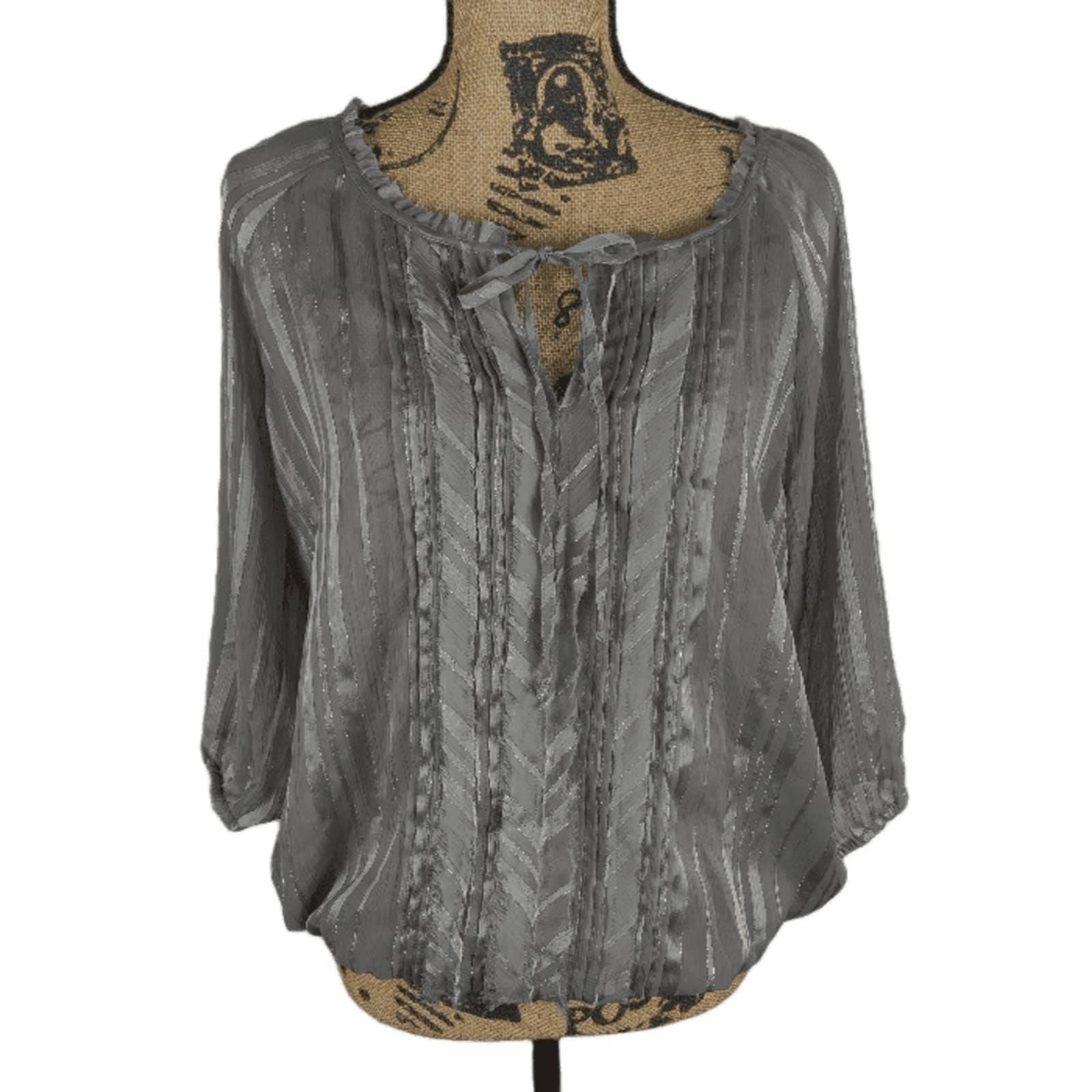 Large Express gray silver stripes blouse