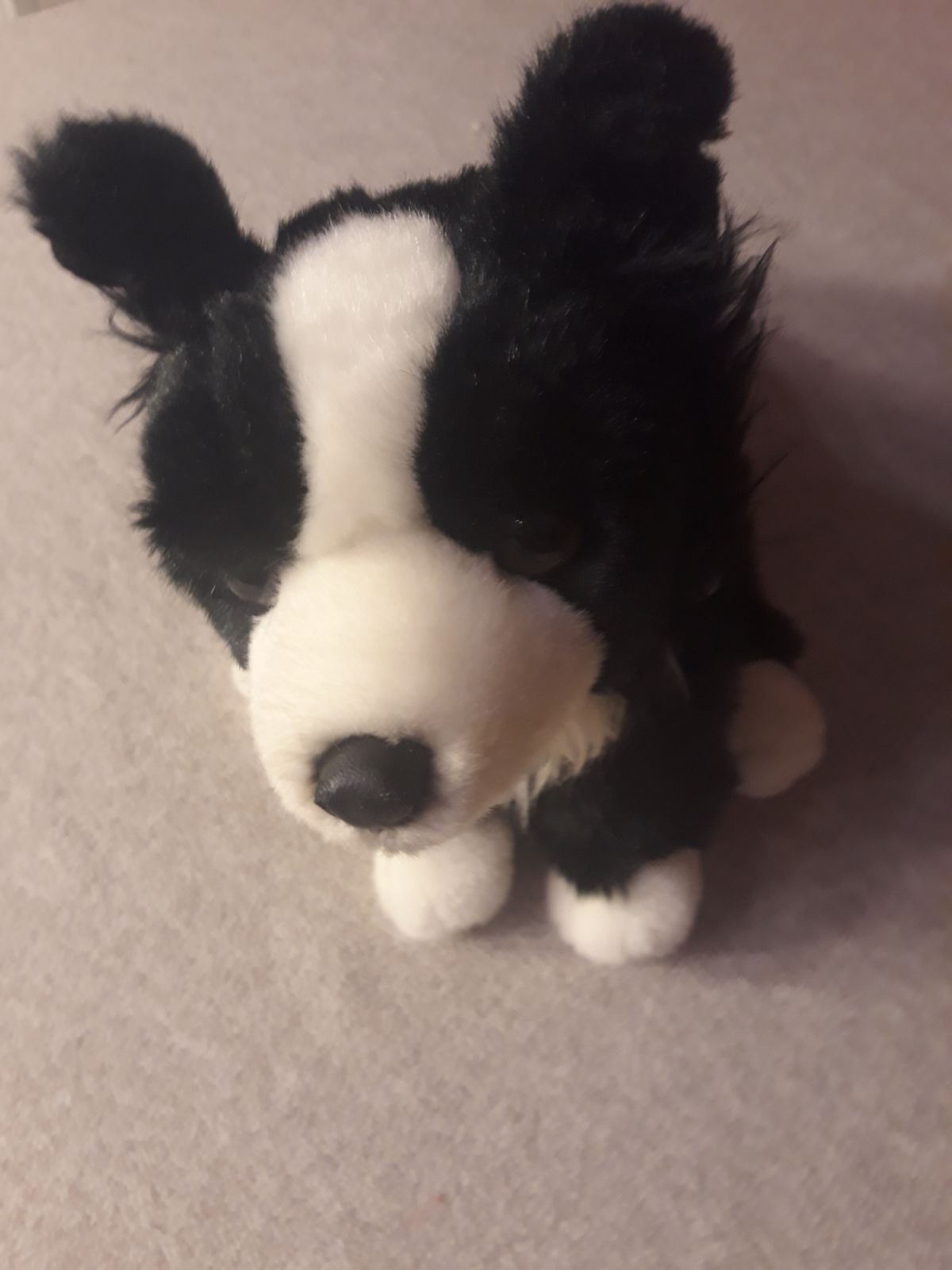 Border Collie Plush, Toys'r'us