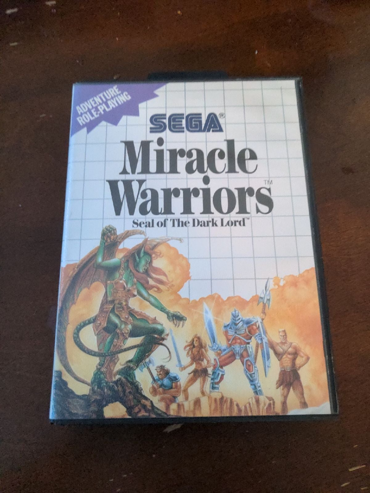 Miracle Warriors with Map on Sega Master