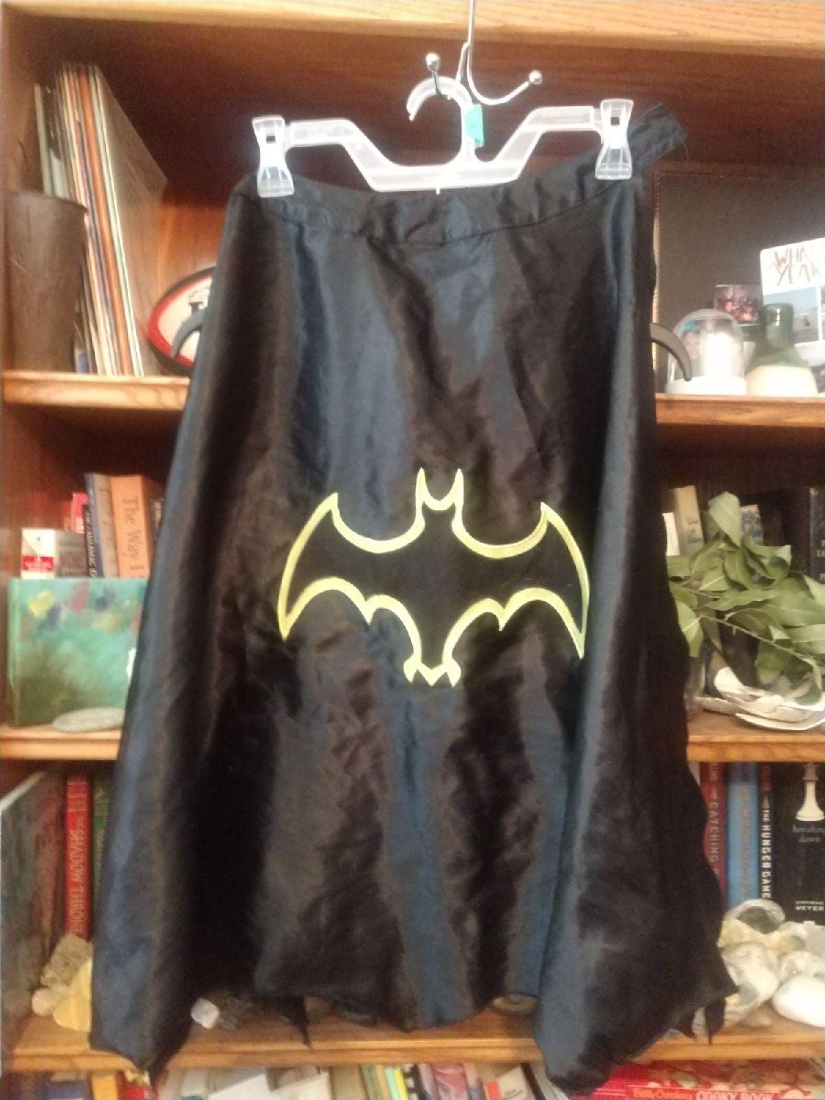 Batman & Superman Dress Up Capes