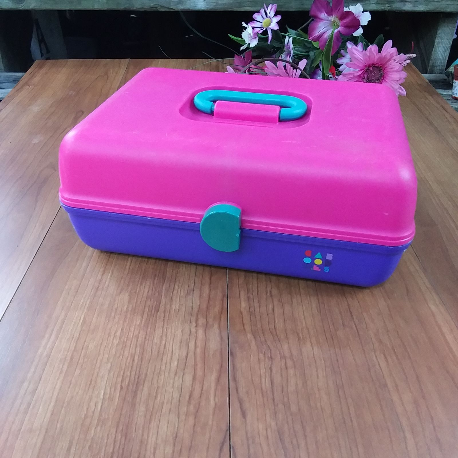 Vintage 90's pink/blue caboodles make up