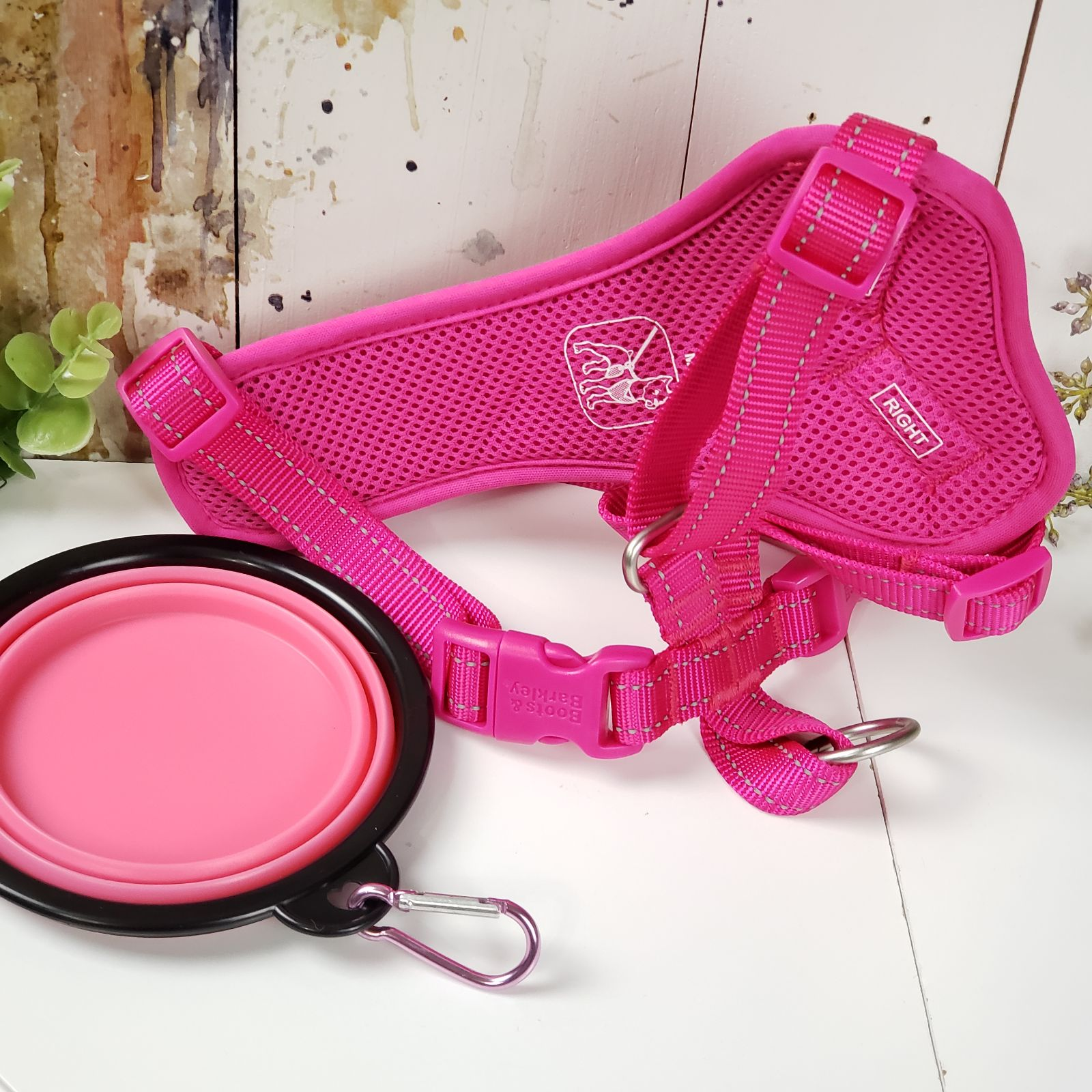 Pink dog harness and silicone bowl