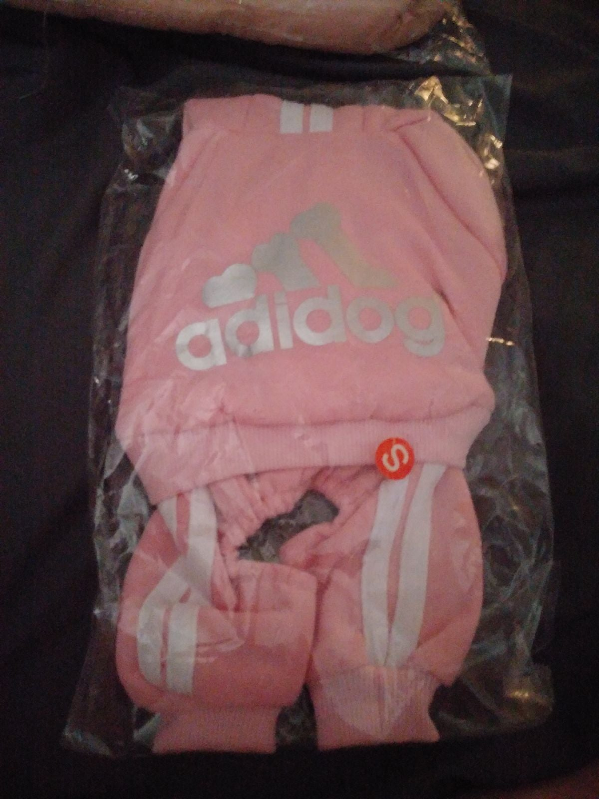 Adidas dog outfit