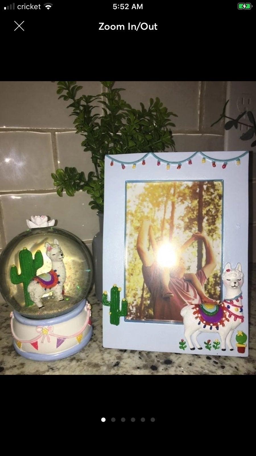 Llama cactus  globe/photo