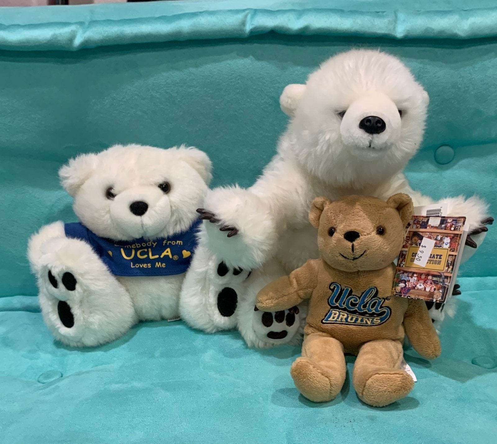 UCLA Bear Plush