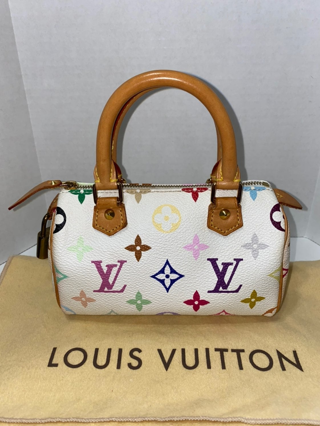 Louis Vuitton Mini Speedy Multicolor