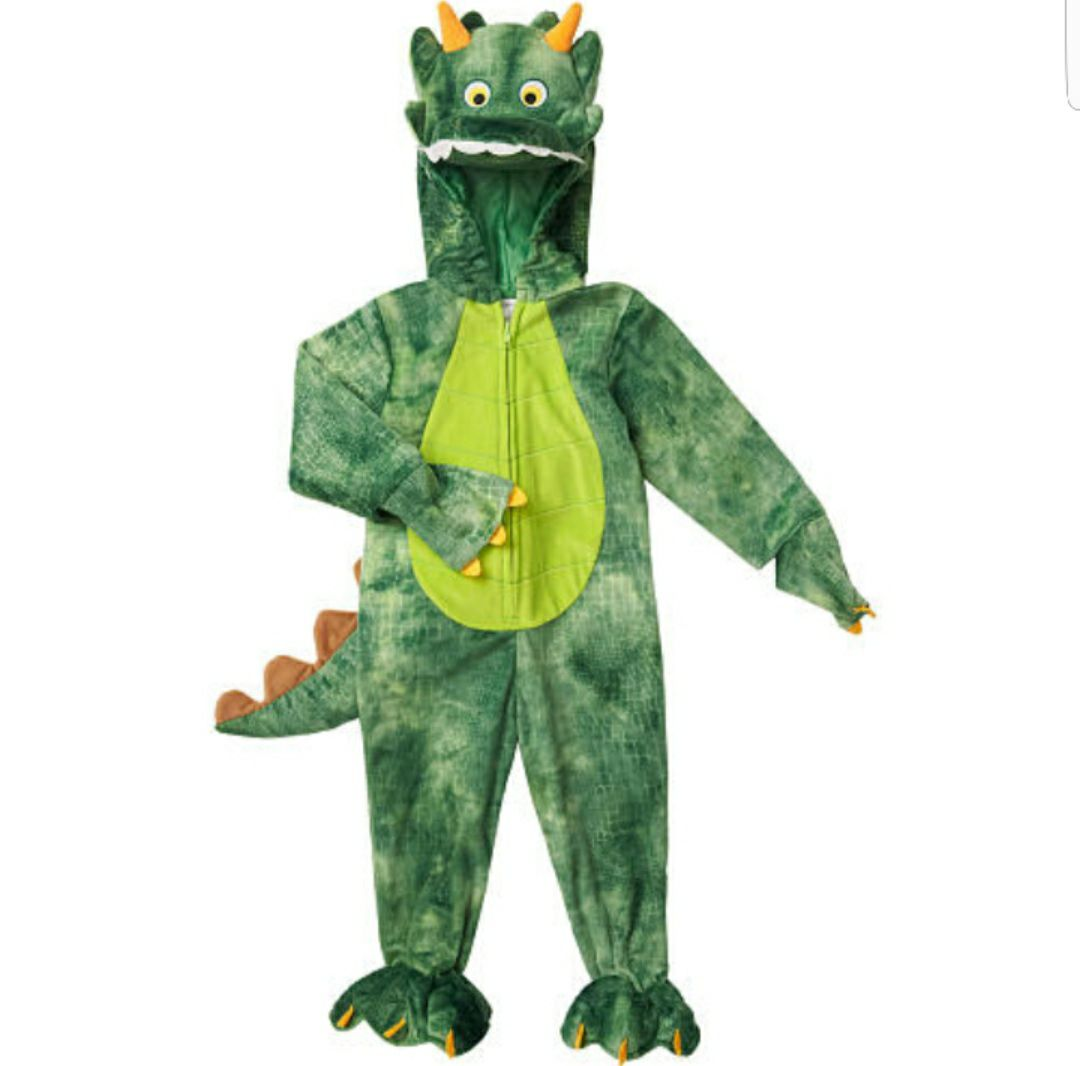 Baby Dinosaur Dragon Costume 9-12 Months